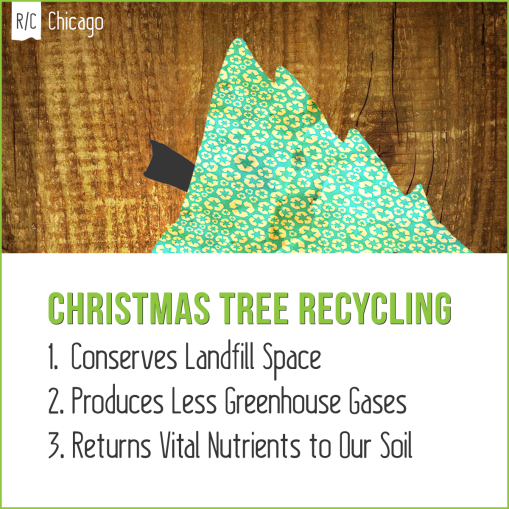 christmas tree recycling begins january 2nd - Chicago Christmas Tree Recycling
